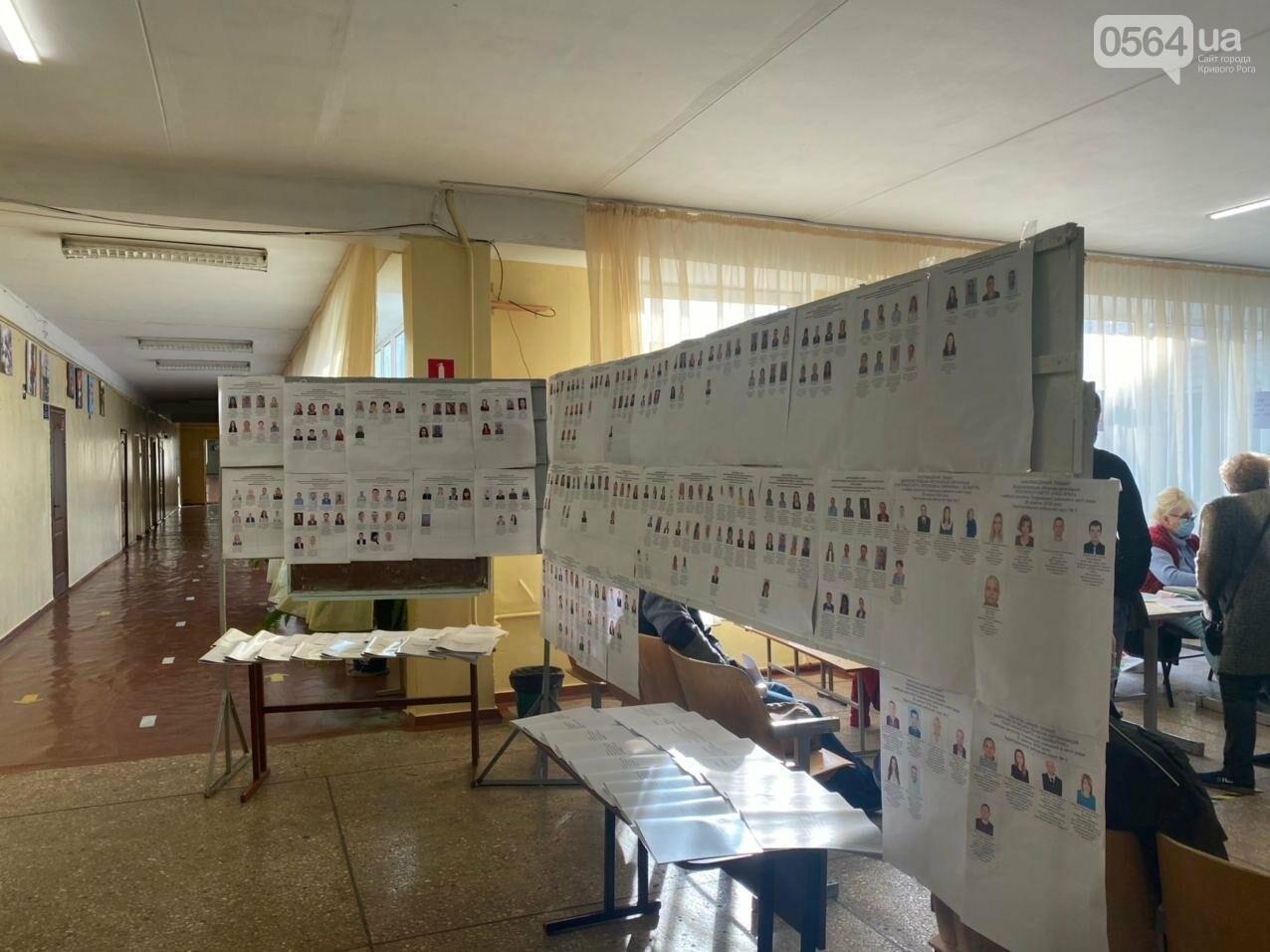 В Кривом Роге избиратель хотел проголосовать раньше времени, - ФОТО, ВИДЕО , фото-6