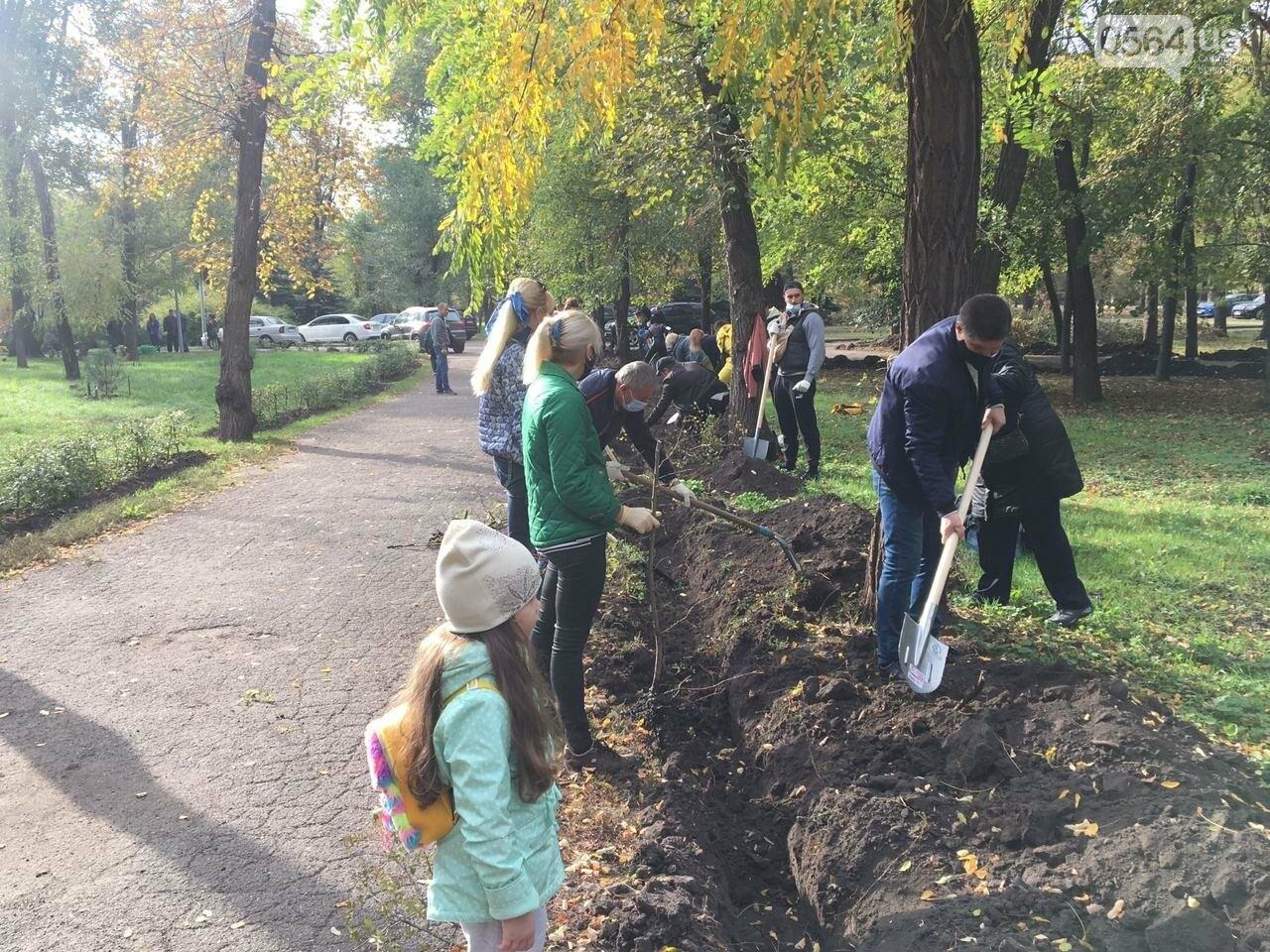 Как выглядит парк, который благоустраивают криворожане, - ФОТО, ВИДЕО, фото-11