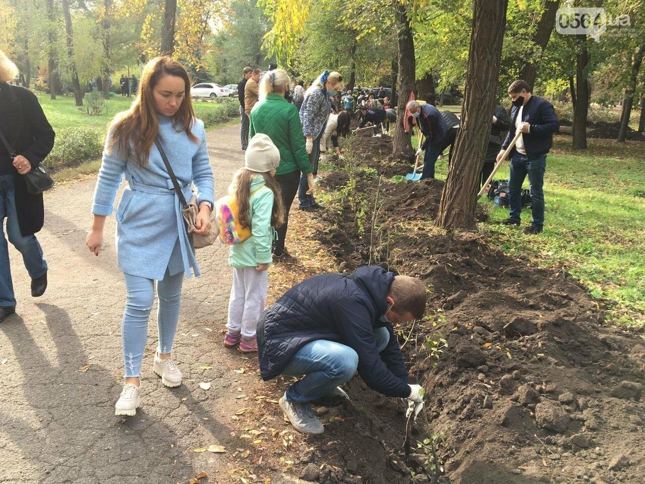 Как выглядит парк, который благоустраивают криворожане, - ФОТО, ВИДЕО, фото-21