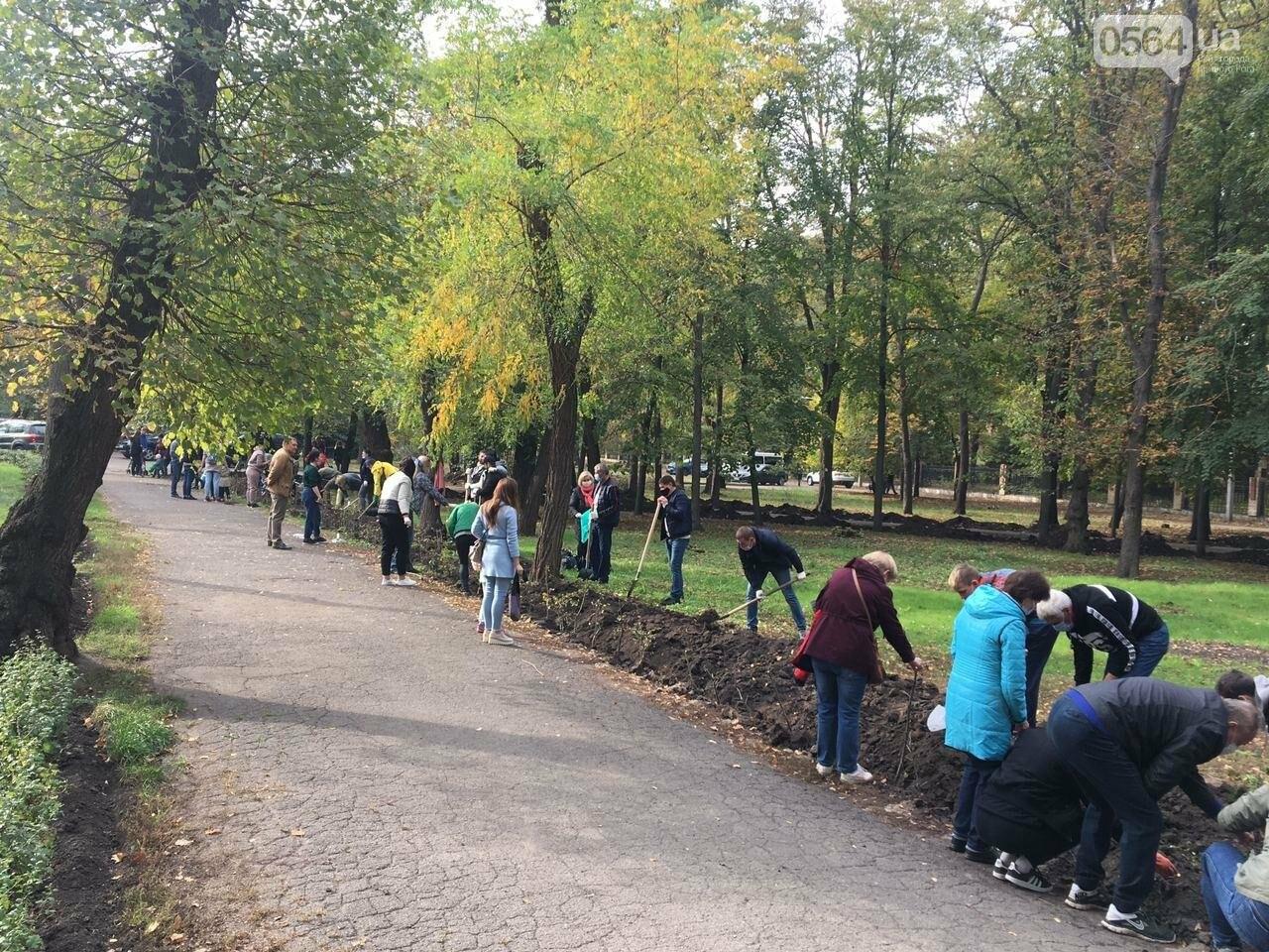 Как выглядит парк, который благоустраивают криворожане, - ФОТО, ВИДЕО, фото-23