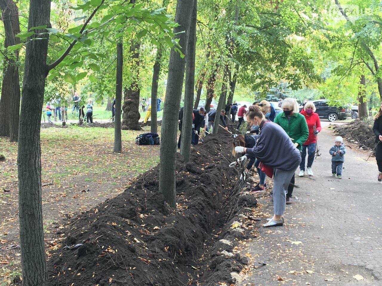 Как выглядит парк, который благоустраивают криворожане, - ФОТО, ВИДЕО, фото-33