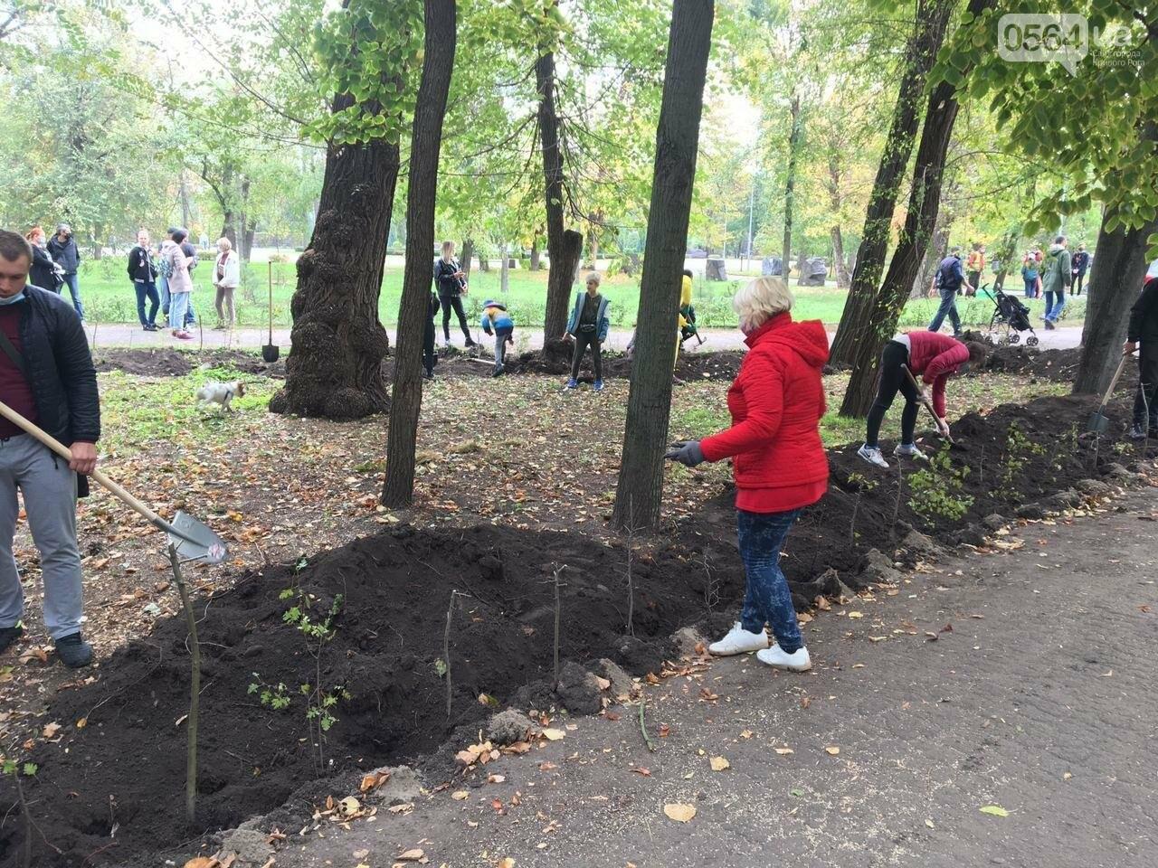 Как выглядит парк, который благоустраивают криворожане, - ФОТО, ВИДЕО, фото-35