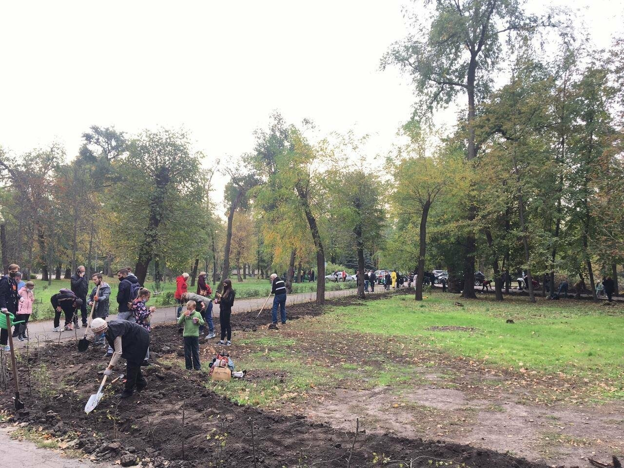 Как выглядит парк, который благоустраивают криворожане, - ФОТО, ВИДЕО, фото-38