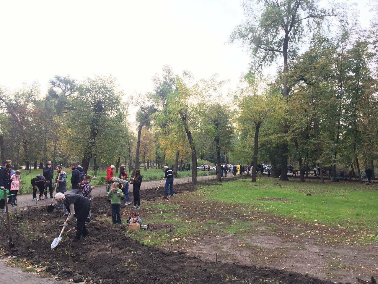 Как выглядит парк, который благоустраивают криворожане, - ФОТО, ВИДЕО, фото-39