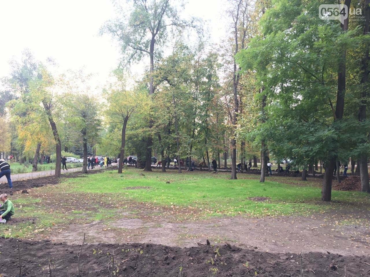 Как выглядит парк, который благоустраивают криворожане, - ФОТО, ВИДЕО, фото-40