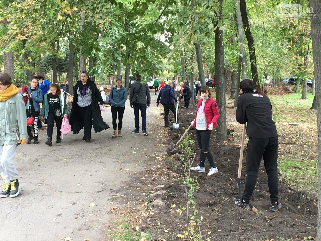 Как выглядит парк, который благоустраивают криворожане, - ФОТО, ВИДЕО, фото-44