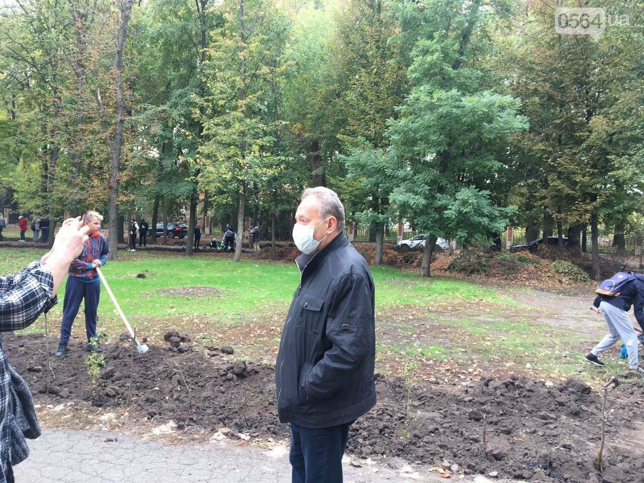 Как выглядит парк, который благоустраивают криворожане, - ФОТО, ВИДЕО, фото-46