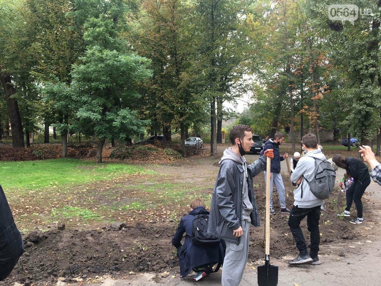 Как выглядит парк, который благоустраивают криворожане, - ФОТО, ВИДЕО, фото-47