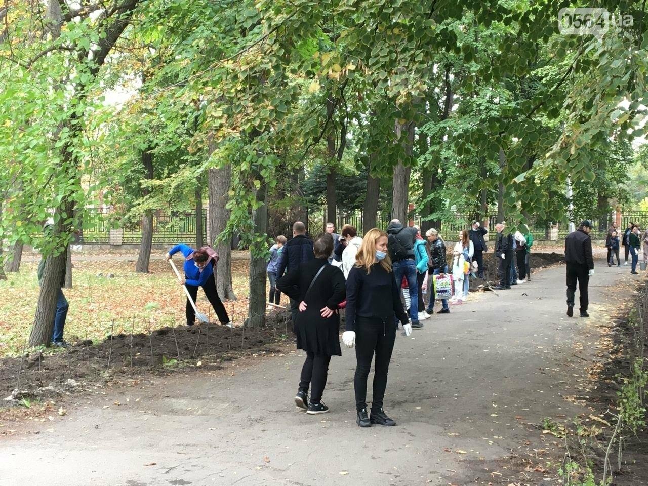 Как выглядит парк, который благоустраивают криворожане, - ФОТО, ВИДЕО, фото-48