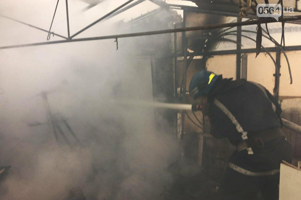 В Кривом Роге сгорели дрова и садовый инвентарь, - ФОТО , фото-1
