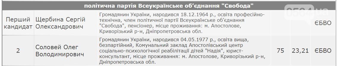 У кого будет большинство в горсовете Апостолово Криворожского района, - ОФИЦИАЛЬНЫЕ РЕЗУЛЬТАТЫ , фото-5