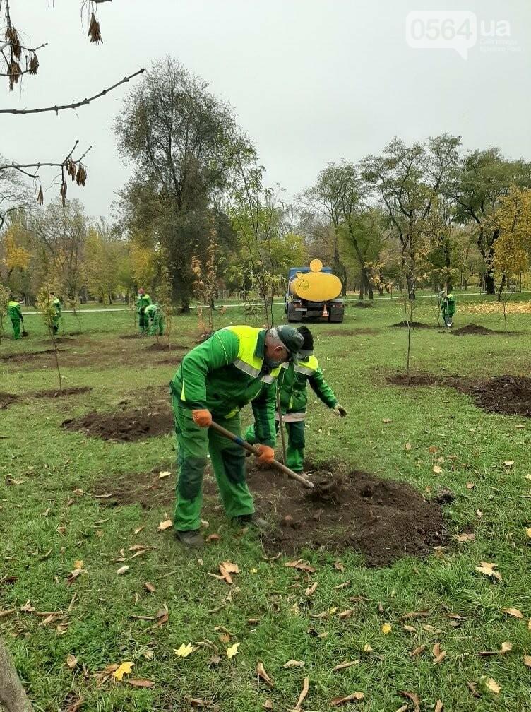 Криворожские экологи призвали промышленные предприятия высадить обещанные деревья на промплощадках, - ФОТО, фото-4