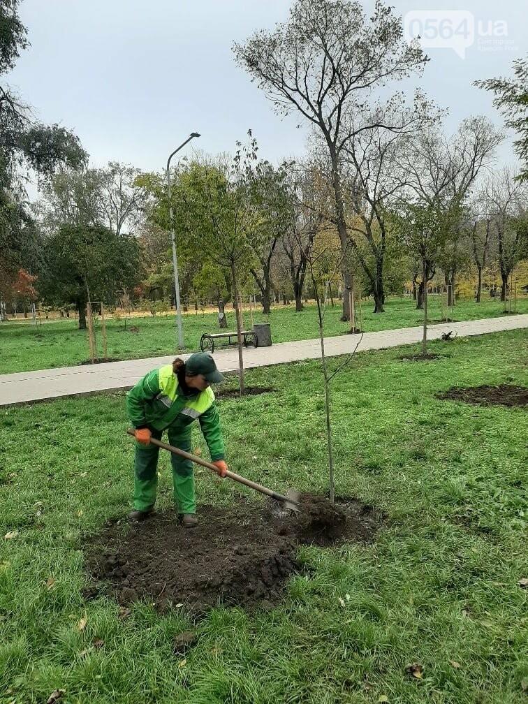 Криворожские экологи призвали промышленные предприятия высадить обещанные деревья на промплощадках, - ФОТО, фото-5