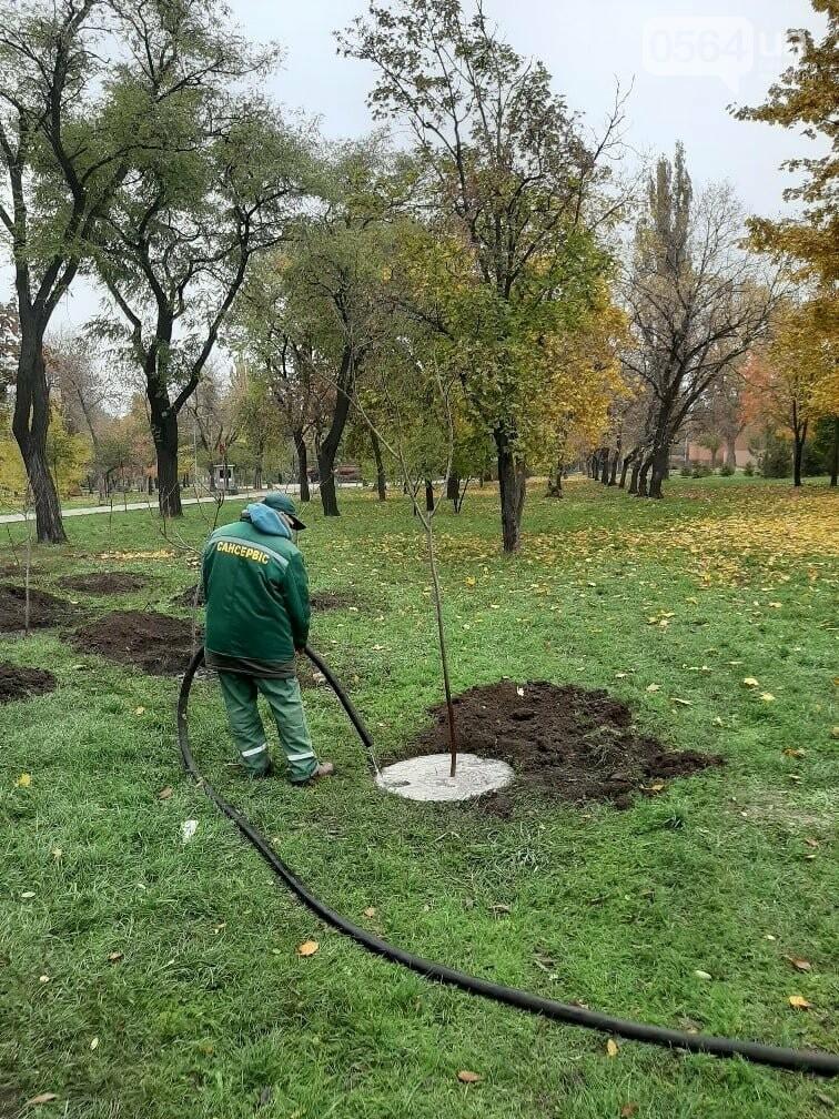 Криворожские экологи призвали промышленные предприятия высадить обещанные деревья на промплощадках, - ФОТО, фото-3