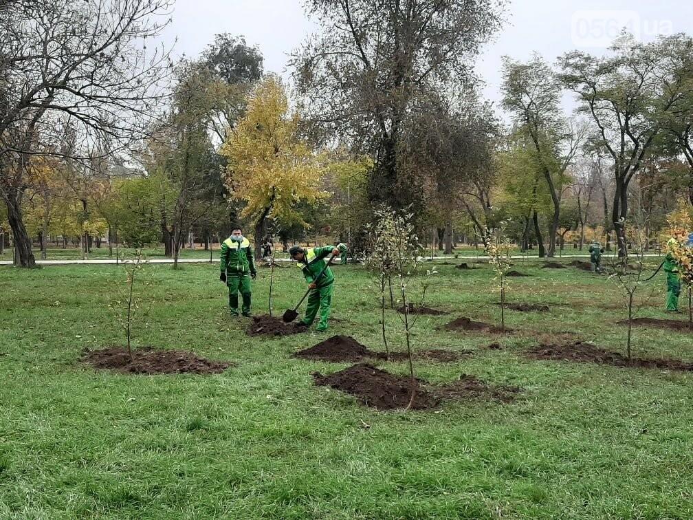 Криворожские экологи призвали промышленные предприятия высадить обещанные деревья на промплощадках, - ФОТО, фото-6