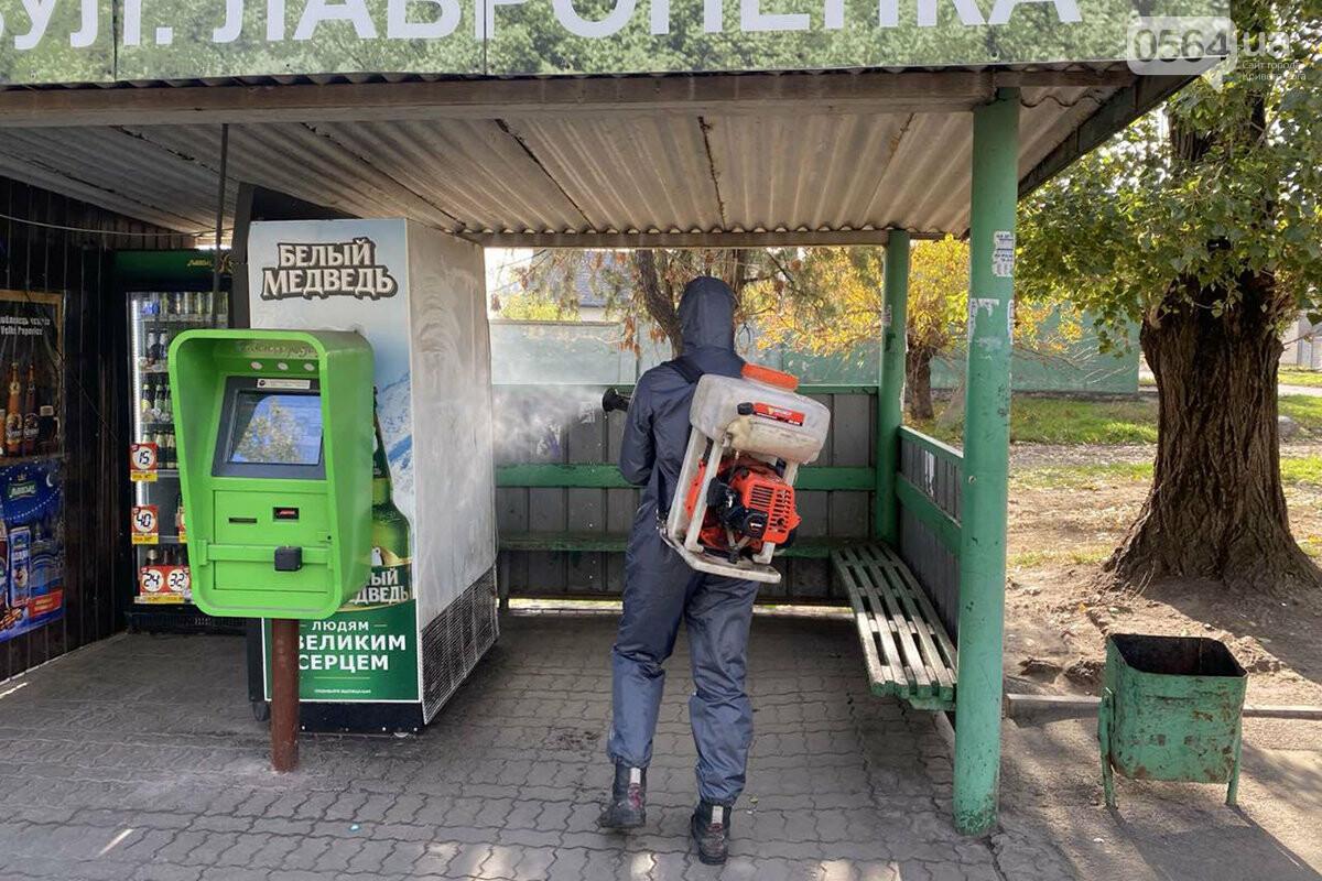 В Кривом Роге чрезвычайники продезинфицировали остановки и места скопления людей, - ФОТО, ВИДЕО , фото-2
