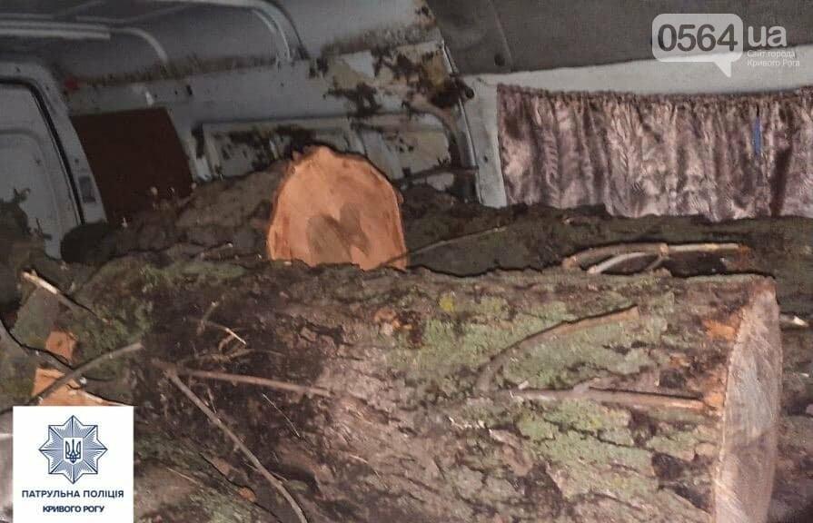 В Кривом Роге копы остановили грузовик с дровами без документов, - ФОТО, фото-2