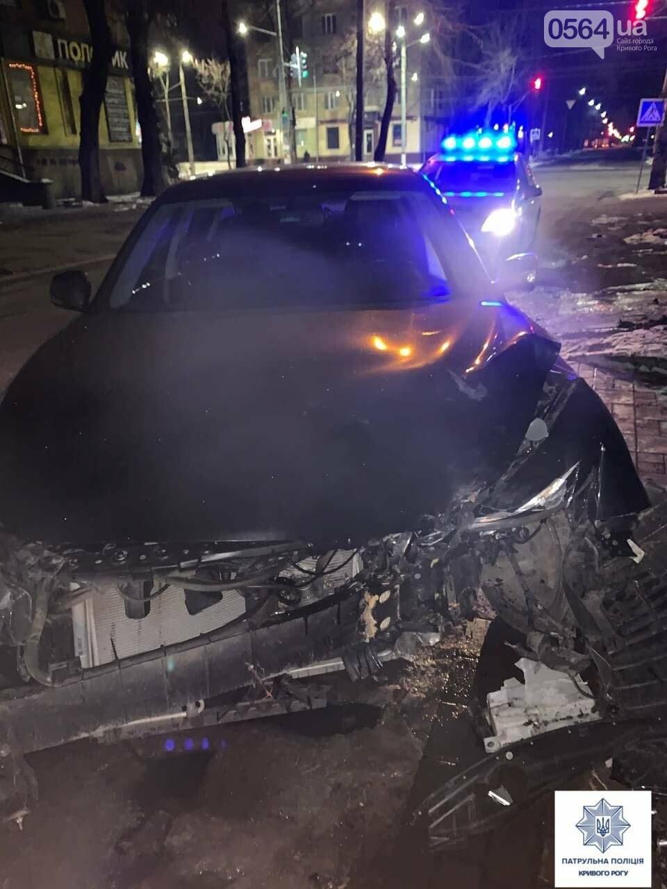 В Кривом Роге пьяный водитель за рулем иномарки врезался в дерево, - ФОТО, фото-2