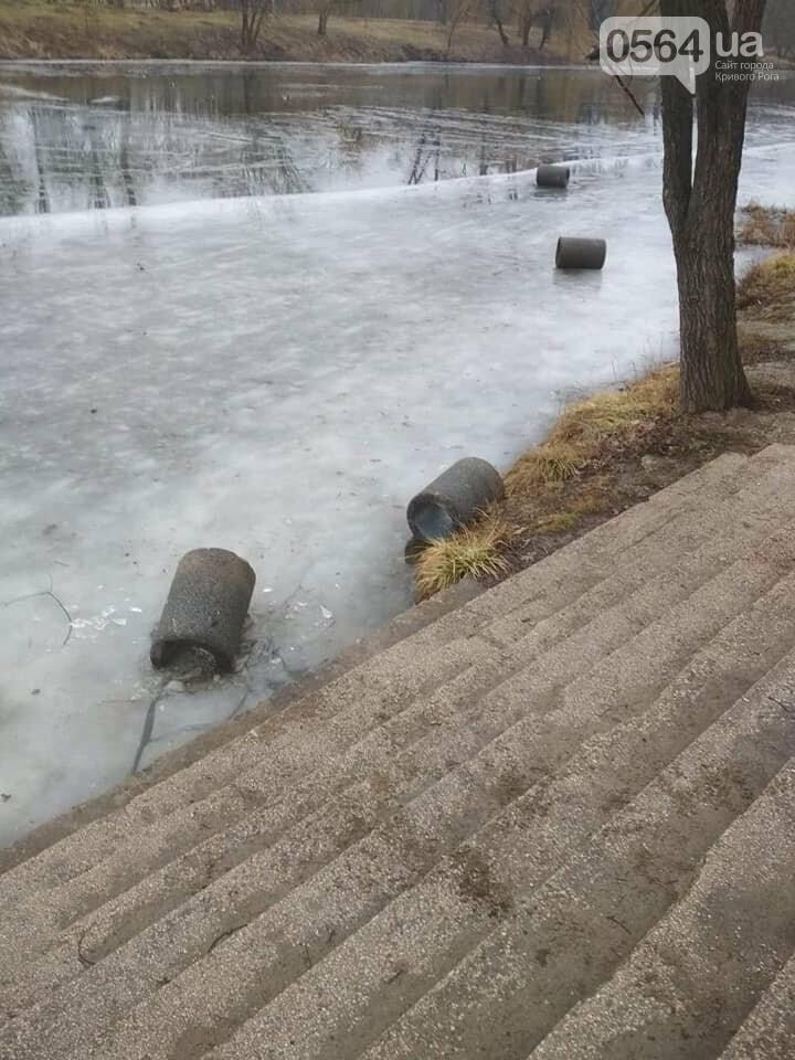 Выбросили 14 урн в реку, сожгли камыш, разобрали тротуарную плитку: в криворожском парке орудовали вандалы, - ФОТО , фото-1
