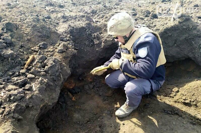 Недалеко от Кривого Рога в поле обнаружили мины - ФОТО, фото-1