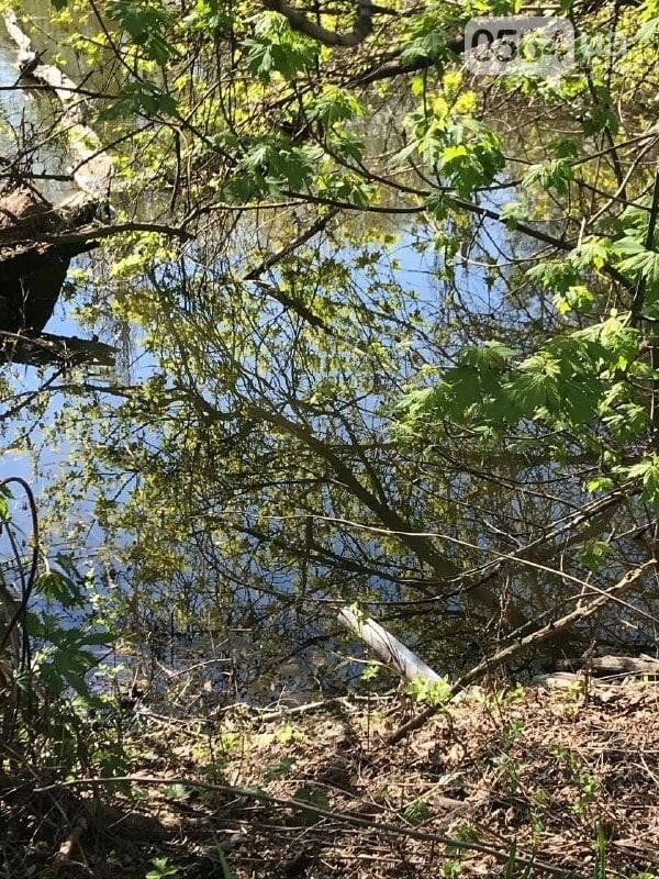В Кривом Роге обнаружили в частном секторе трубы, сбрасывающие стоки в реку, - ФОТО , фото-4