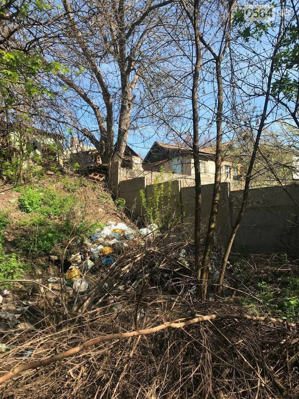 В Кривом Роге обнаружили в частном секторе трубы, сбрасывающие стоки в реку, - ФОТО , фото-1