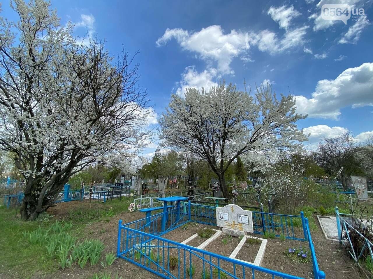 На криворожских кладбищах накануне поминальных дней в усиленном режиме работает спецтехника, - ФОТО, ВИДЕО , фото-21