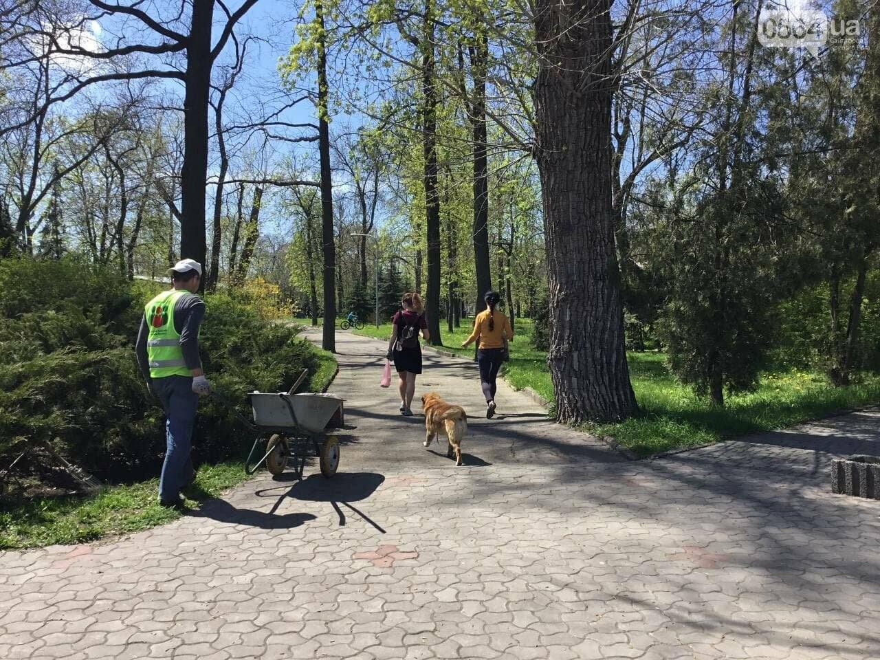Прогулки, фотосессии, отдых на природе, - как криворожане провели первые дни мая, - ФОТО, ВИДЕО, фото-12