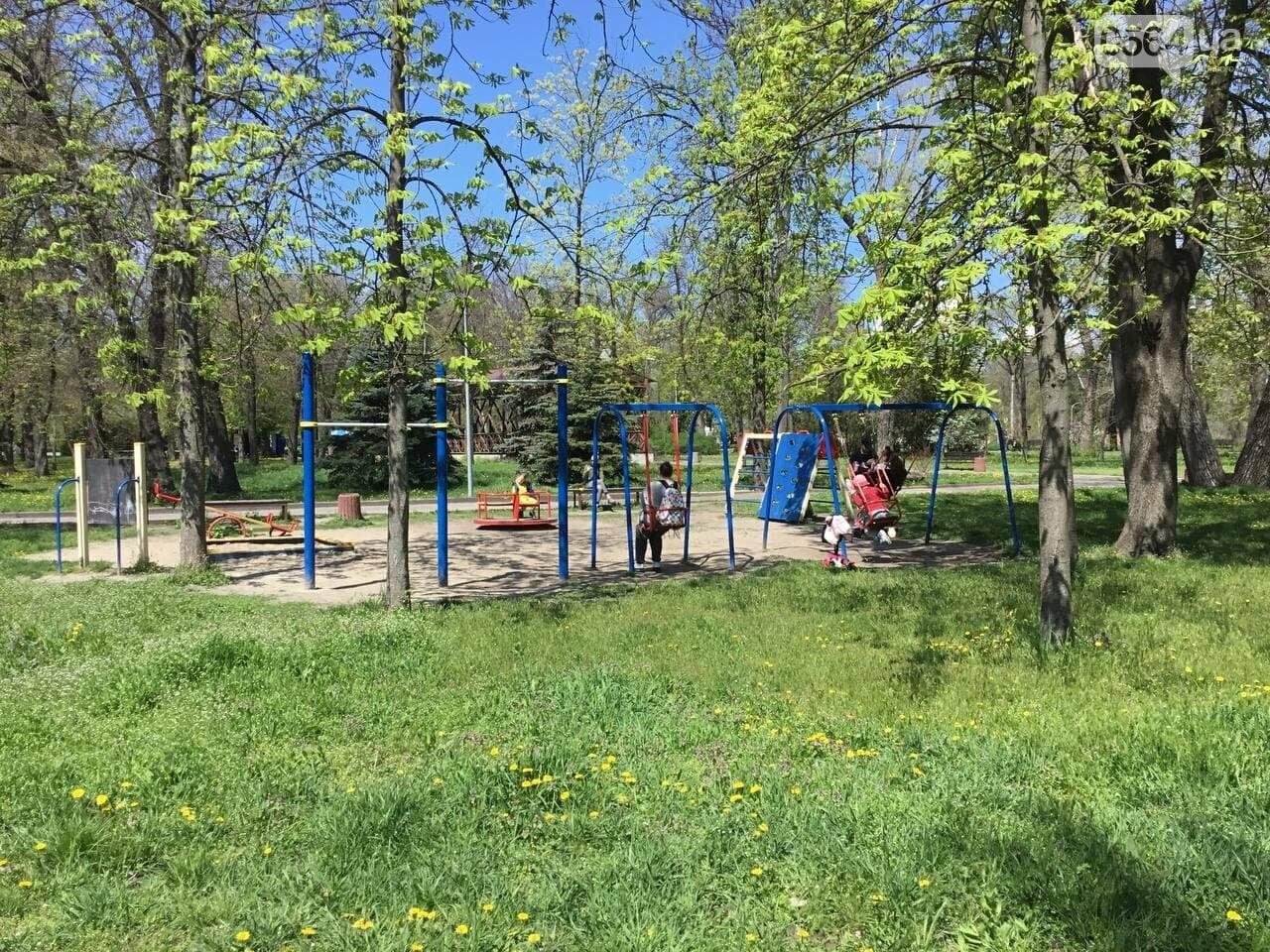 Прогулки, фотосессии, отдых на природе, - как криворожане провели первые дни мая, - ФОТО, ВИДЕО, фото-20