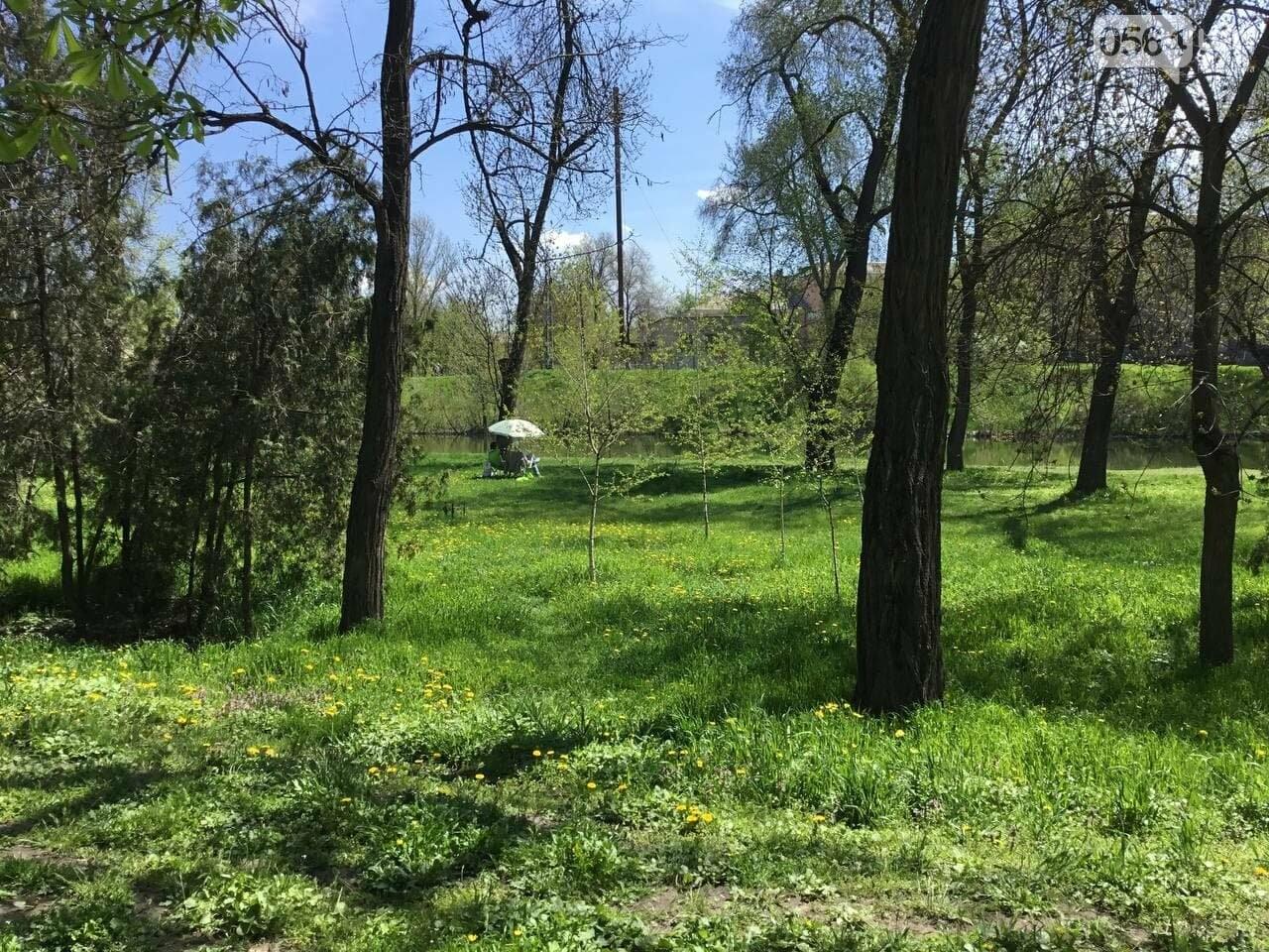 Прогулки, фотосессии, отдых на природе, - как криворожане провели первые дни мая, - ФОТО, ВИДЕО, фото-18