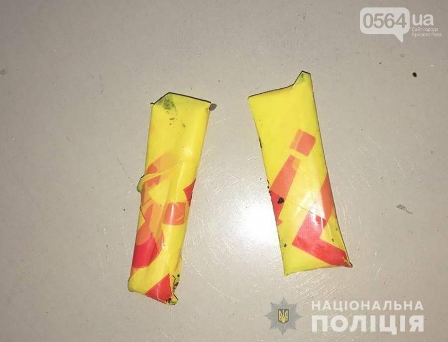 """Криворожскую """"закладчицу"""" задержали в Запорожье когда она прятала наркотики по городу, - ФОТО , фото-3"""