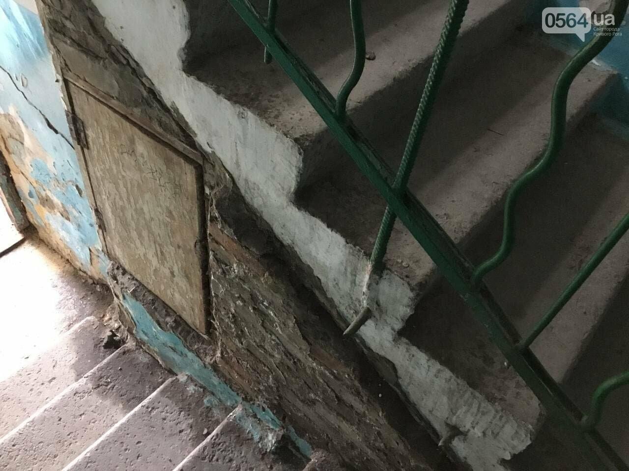 """""""В доме влага и в трещины, а в соседней квартире живут голуби и тараканы"""", - криворожане с улицы Соборности, - ФОТО, ВИДЕО, фото-27"""