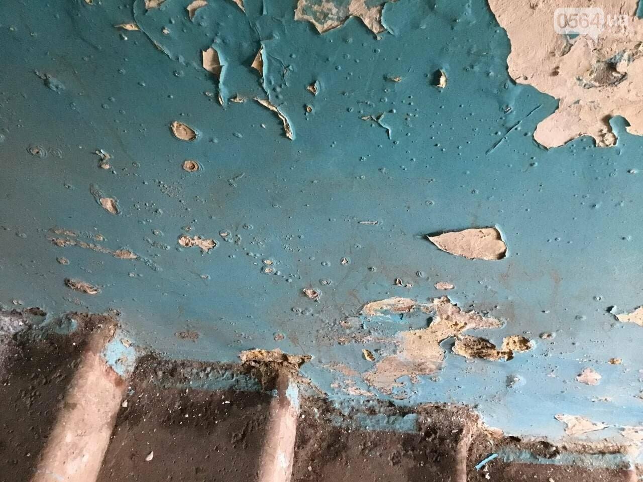 """""""В доме влага и в трещины, а в соседней квартире живут голуби и тараканы"""", - криворожане с улицы Соборности, - ФОТО, ВИДЕО, фото-30"""