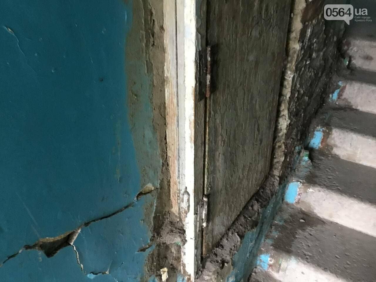 """""""В доме влага и в трещины, а в соседней квартире живут голуби и тараканы"""", - криворожане с улицы Соборности, - ФОТО, ВИДЕО, фото-24"""