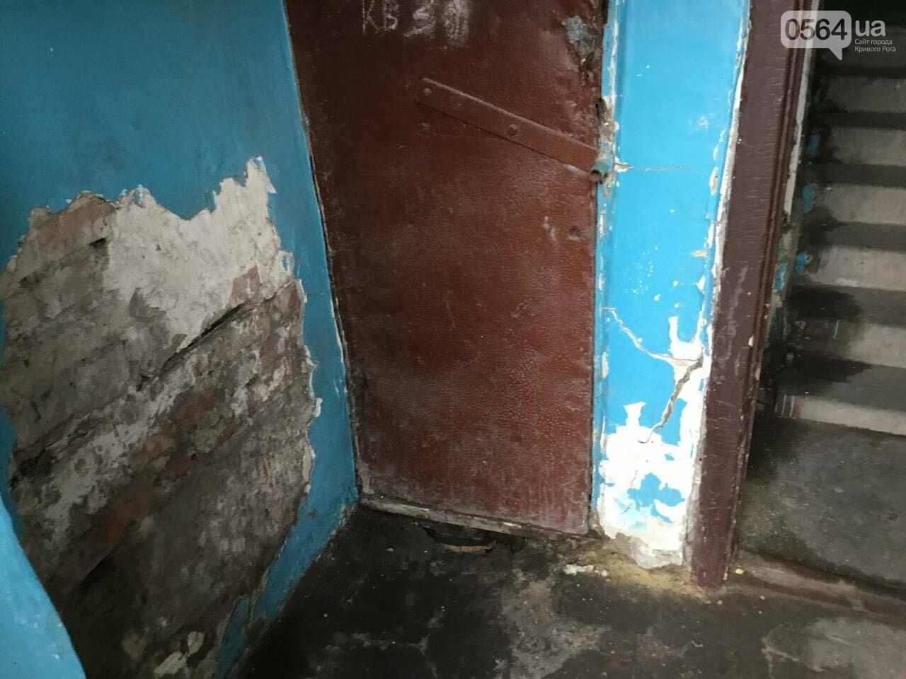 """""""В доме влага и в трещины, а в соседней квартире живут голуби и тараканы"""", - криворожане с улицы Соборности, - ФОТО, ВИДЕО, фото-3"""
