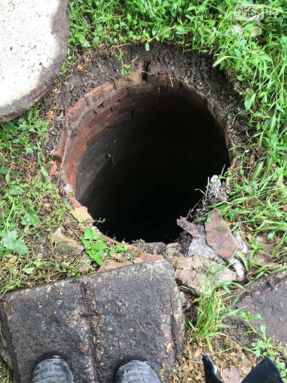 В Кривом Роге кот провалился в канализационный люк, - ФОТО , фото-2