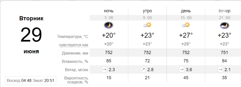 Погода в Кривом Роге на неделю: когда криворожанам ждать прохлады, фото-7