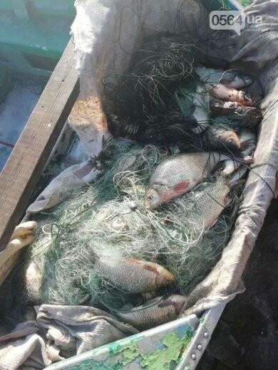 В течение нерестового запрета на Днепропетровщине изъято почти 2 тонны незаконной рыбы, - ФОТО, фото-5