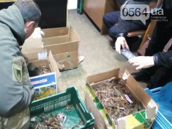 В течение нерестового запрета на Днепропетровщине изъято почти 2 тонны незаконной рыбы, - ФОТО, фото-3