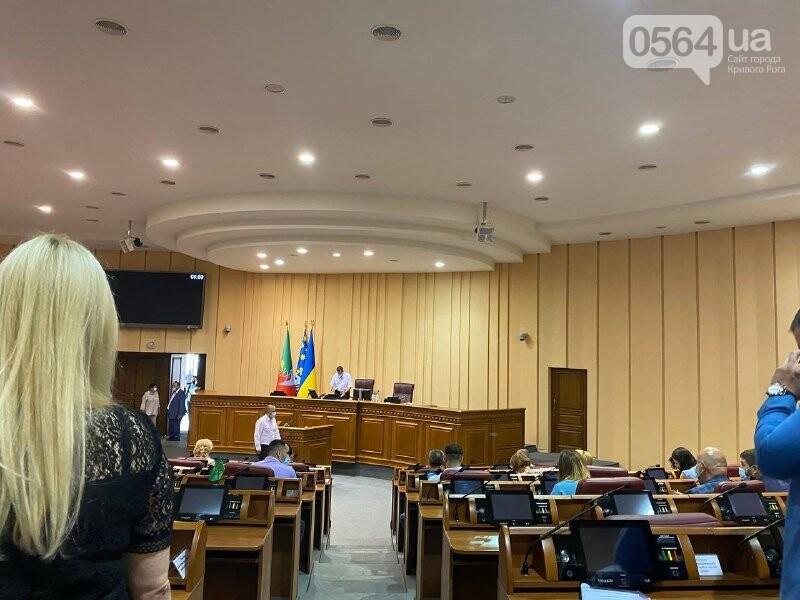 Криворожские депутаты собрались на июньскую сессию, - ФОТО, ВИДЕО , фото-2