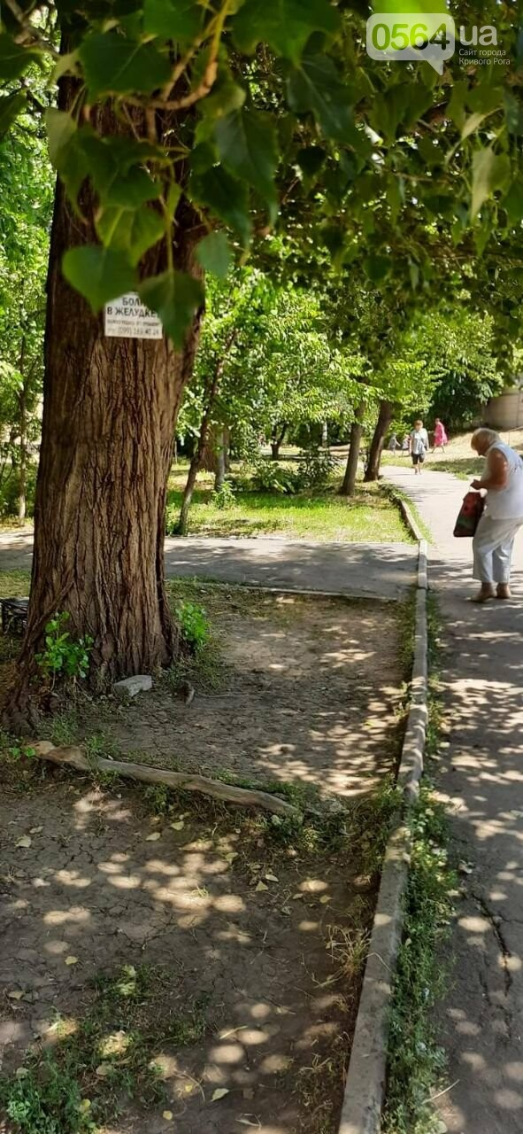 В Кривом Роге ликвидировали несколько мест стихийной торговли, - ФОТО., фото-6