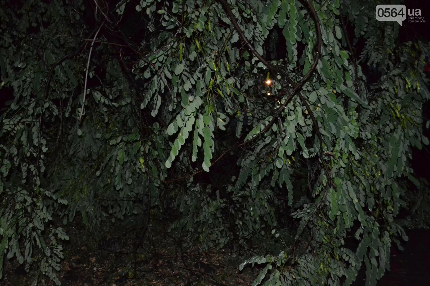 На Кривой Рог обрушился шквал и град, - ФОТО, фото-7