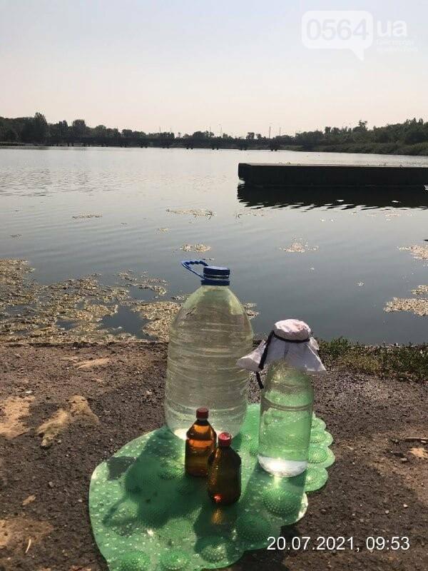 """В Кривом Роге интенсивно """"цветет"""" вода на водоемах, - ФОТО , фото-3"""