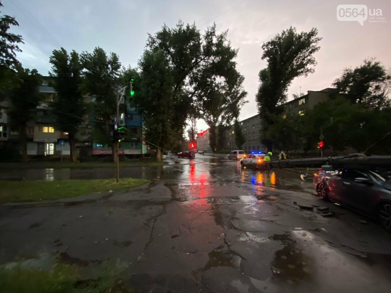 Во время дождя в Кривом Роге Volkswagen снес столб, - ФОТО, фото-6