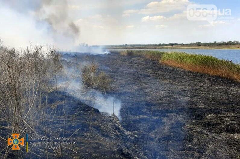 В Кривом Роге и Криворожском районе за сутки 14 раз горела сухая трава на открытой территории, - ФОТО , фото-2