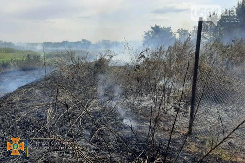 В Кривом Роге и Криворожском районе за сутки 14 раз горела сухая трава на открытой территории, - ФОТО , фото-1
