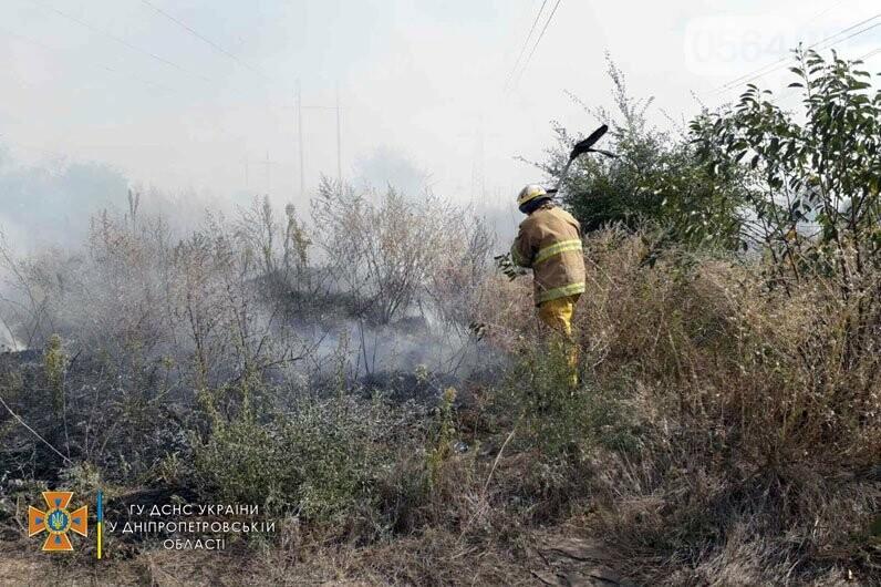 В Кривом Роге и Криворожском районе за сутки 14 раз горела сухая трава на открытой территории, - ФОТО , фото-6