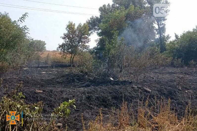 В Кривом Роге и Криворожском районе за сутки 14 раз горела сухая трава на открытой территории, - ФОТО , фото-5