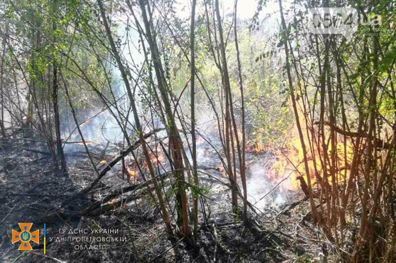 В Кривом Роге и Криворожском районе за сутки 14 раз горела сухая трава на открытой территории, - ФОТО , фото-3