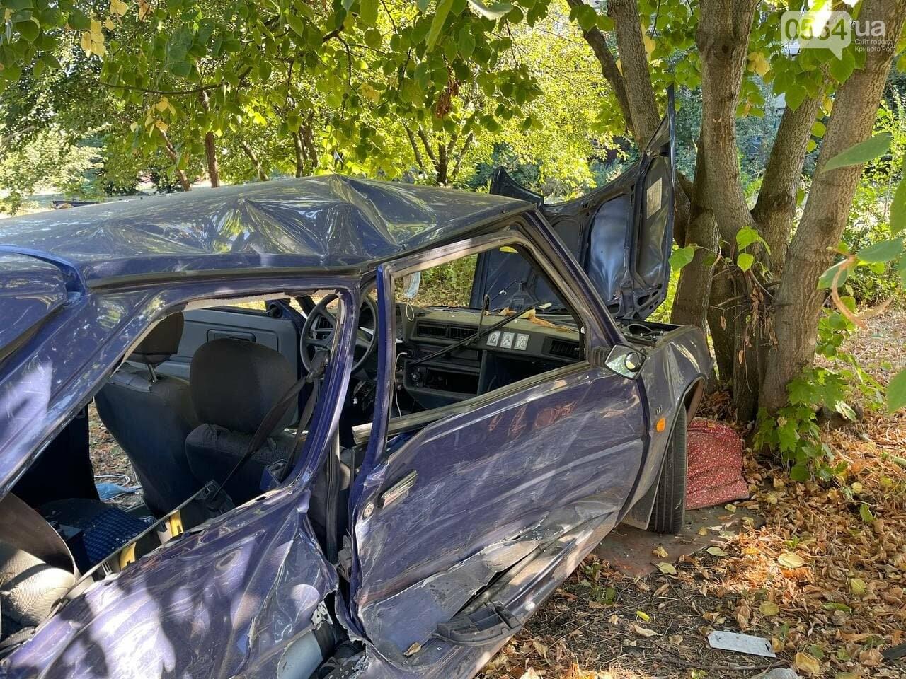 Два человека пострадали в аварии возле объездной дороги в Кривом Роге, - ФОТО, фото-3